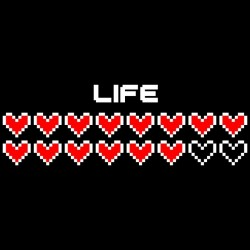 Peluches Chat Bus