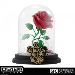 T-shirt Neko - Nekotoro - Mon voisin Totoro - Fond Noir - S - Fille - S Femme
